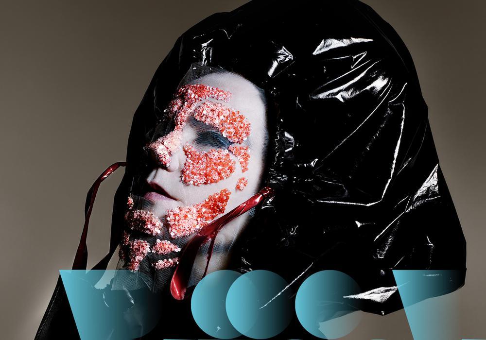 Björk アイスランド エアウェイブス airwaves 音楽 バンド おすすめ
